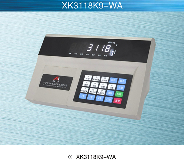 物联网系统XK3118K9-WA