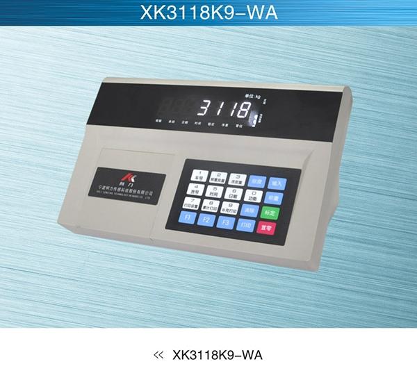 江苏物联网系统XK3118K9-WA